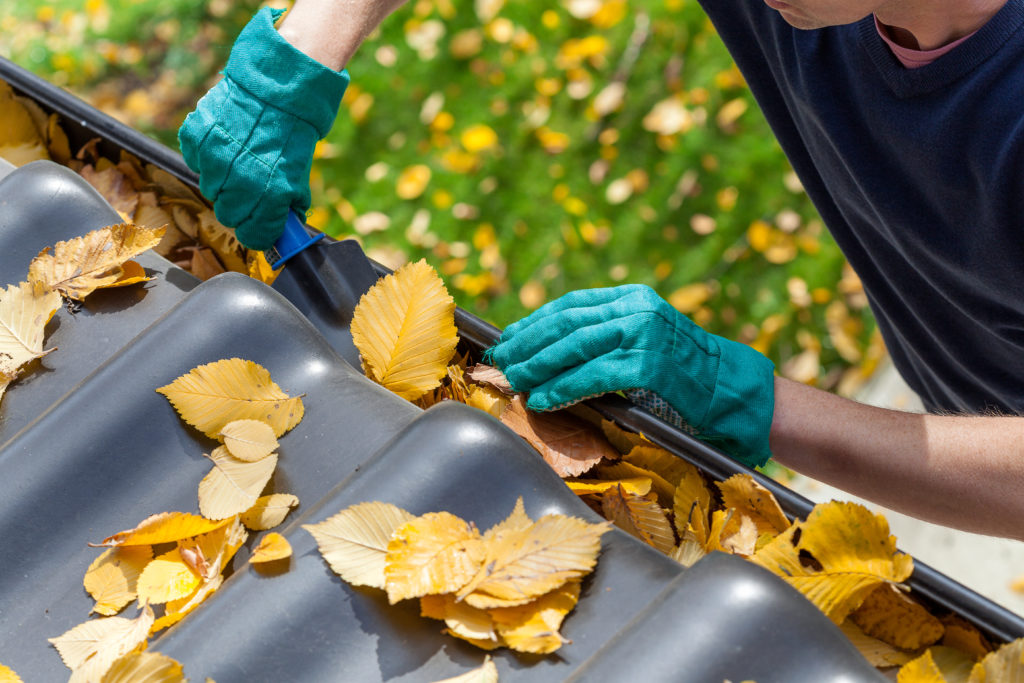 Gutter cleaning during spring